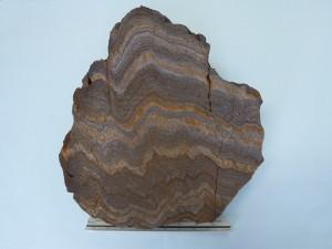 縞状鉄鉱(27~26億年前,南インド・ダルワール地域)