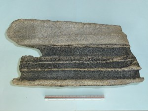 花崗岩質片麻岩(白)と角閃石片麻岩(黒)の互層