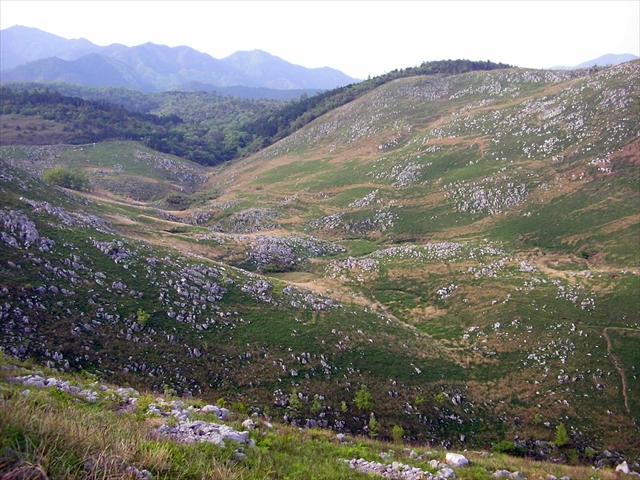 秋吉台の景観、帰り水付近のドリーネ群