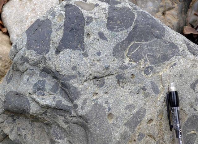 錦層群のマッドクラスト(砂岩・泥岩同時礫)