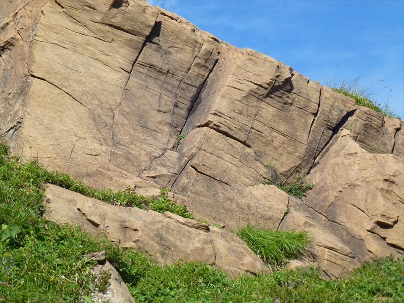 地球史40億年の記録   世界と日本の岩石・鉱物標本を展示しています            主な標本と見学コース